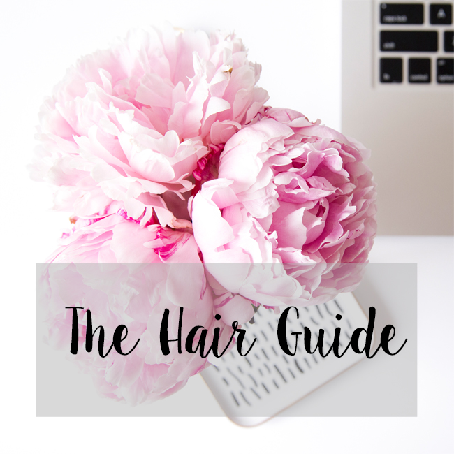 thehairguidetitle