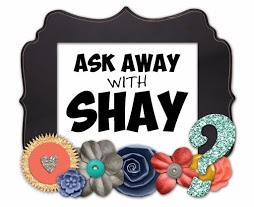 Fifty Two Shades of Shay: Our Adoption Process