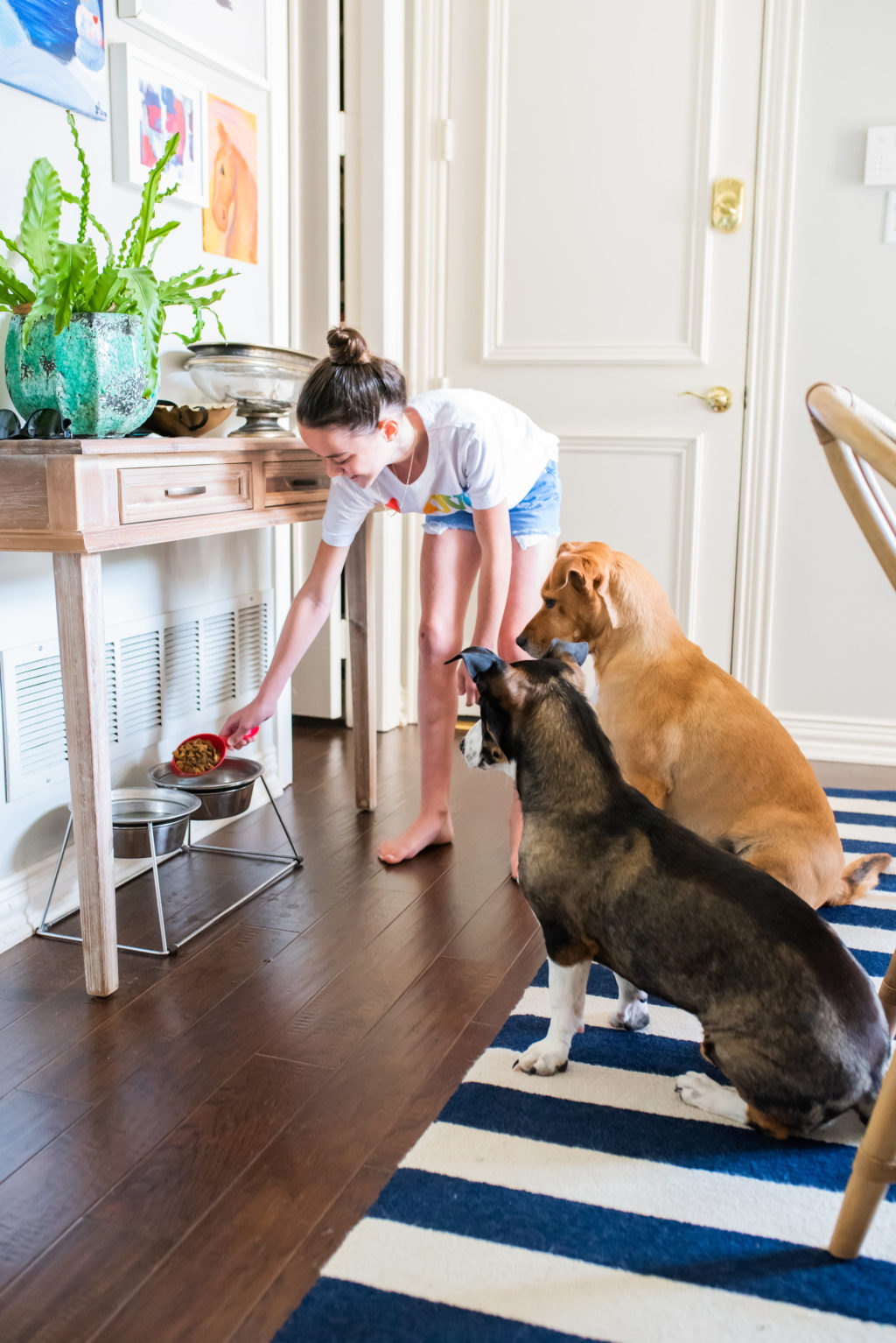 kids chores feed the dogs